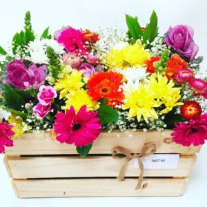 Flower boxes, flowers, florist, flower gifts, succulents, roses, corporate gifts, birthday gift, realestate gifts, gift boxes, chocolate hampers, Sydney flower delivery, Christmas gifts, Christmas hampers